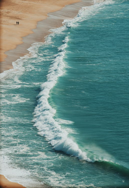 2 Person Walking on Seashore