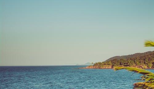 ビーチ, ホンジュラス, ロアタン, 休暇の無料の写真素材