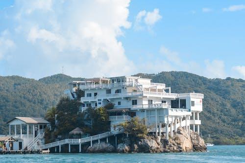 기반암, 락, 섬, 여름의 무료 스톡 사진