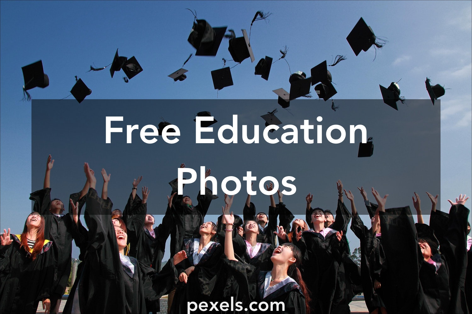 500 great education photos pexels free stock photos