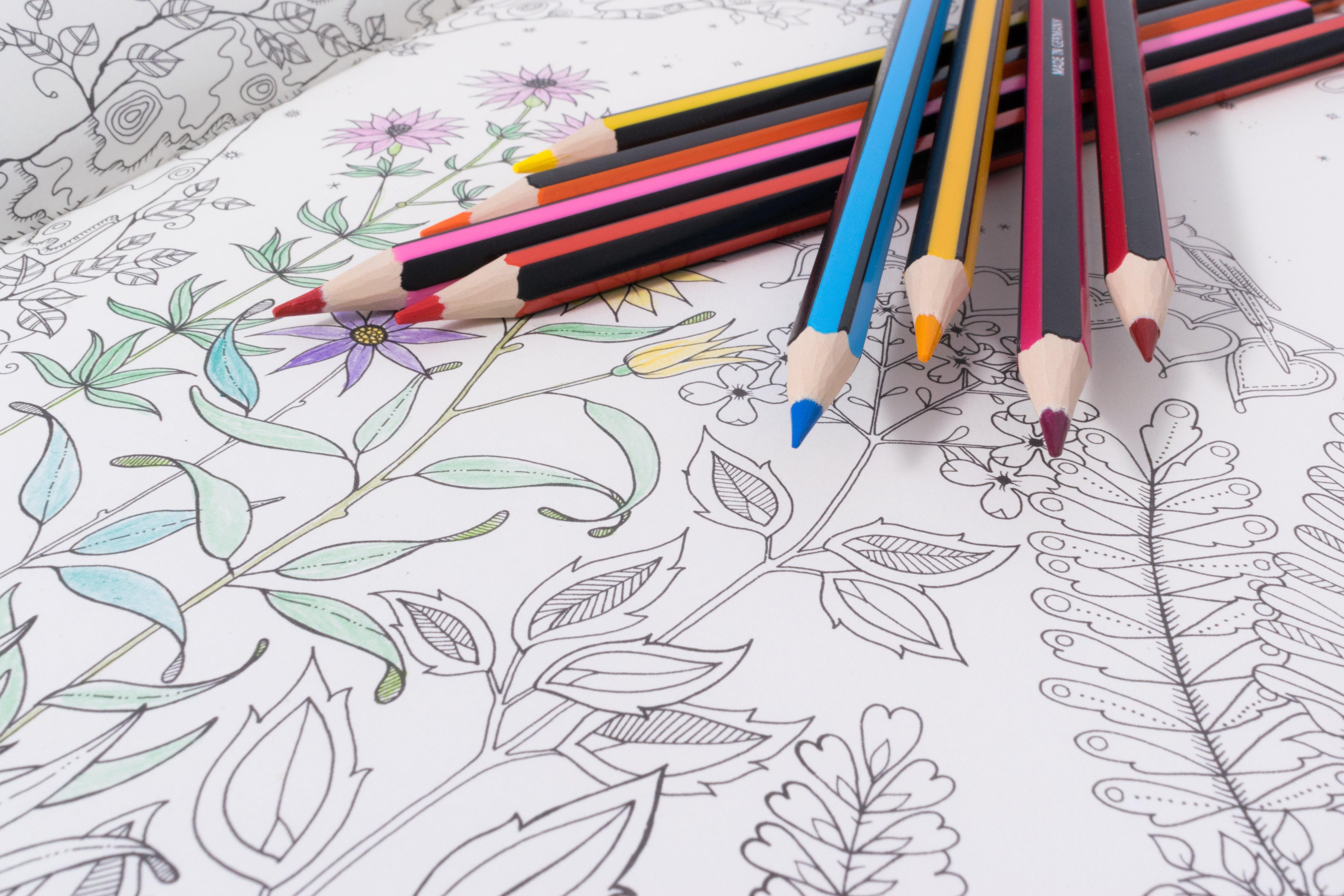 Free stock photo of creative, flowers, pencil, school
