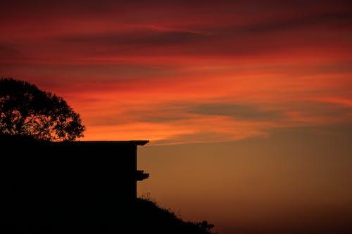 Δωρεάν στοκ φωτογραφιών με #outdoorchallenge, απογευματινός ήλιος, δέντρο, δραματικός ουρανό