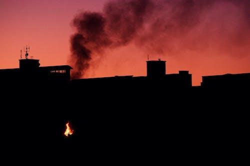 Δωρεάν στοκ φωτογραφιών με ανάβω φωτιά, απογευματινός ήλιος, δασική πυρκαγιά, ίχνος καπνού