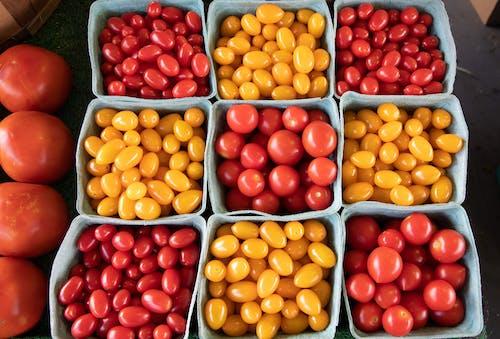 Fotobanka sbezplatnými fotkami na tému agbiopix, čerešňa, farma, paradajka