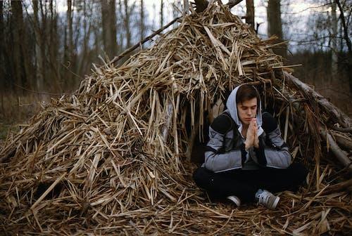 Fotos de stock gratuitas de al aire libre, heno, meditación, meditando