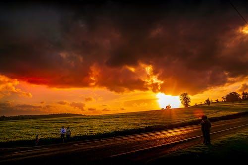 Photos gratuites de coucher de soleil sur la ferme de thé, route de ferme