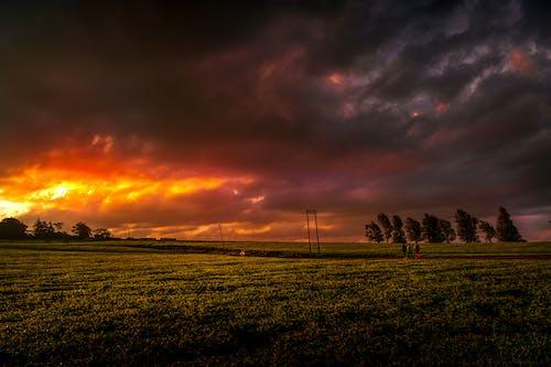 Photos gratuites de heure d'or coucher du soleil
