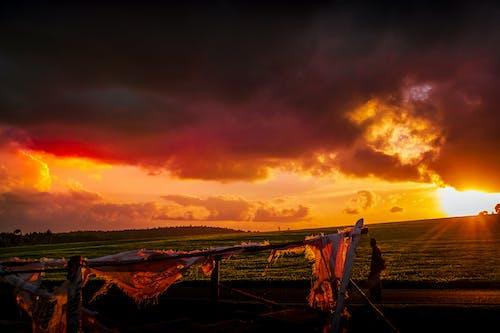 Photos gratuites de beau coucher de soleil, teafarm