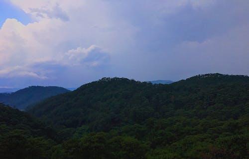 Безкоштовне стокове фото на тему «блакитне небо, В'єтнам, гора, дерева»