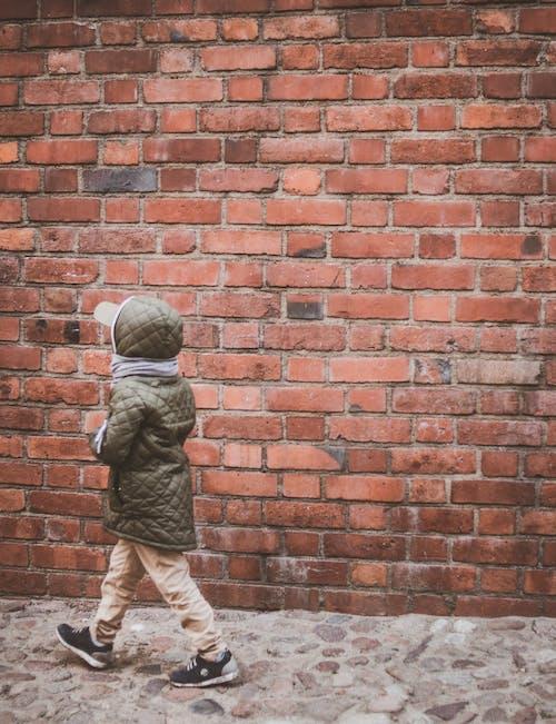 Free stock photo of brick wall, kid