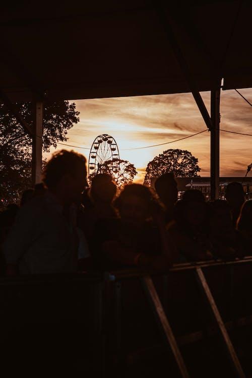 Foto profissional grátis de adulto, animado, ao ar livre, cair da noite