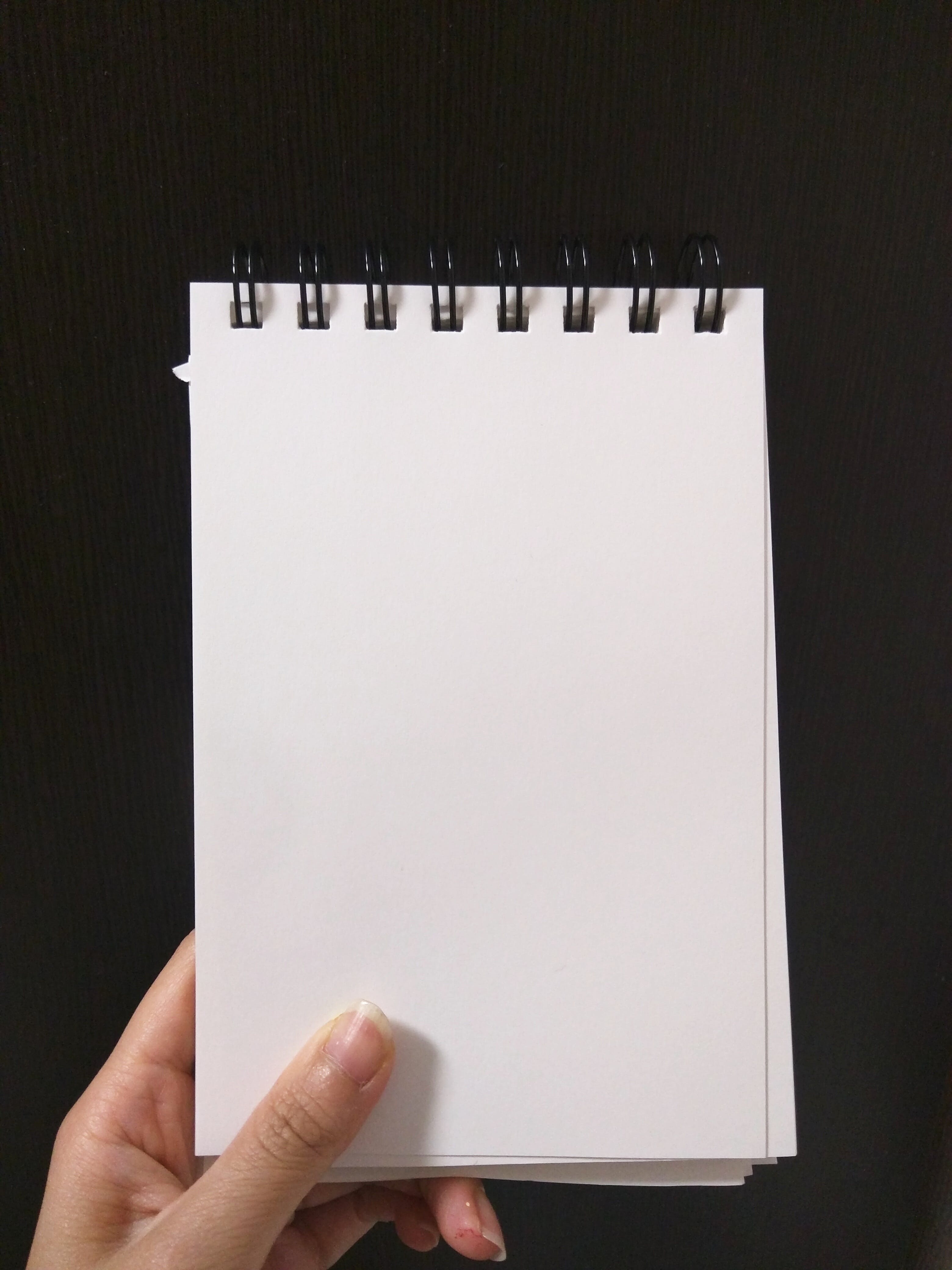 Person Holding Empty Notebook