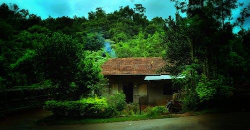 Fotos de stock gratuitas de aislado, belleza en la naturaleza, casa, casa de montaña