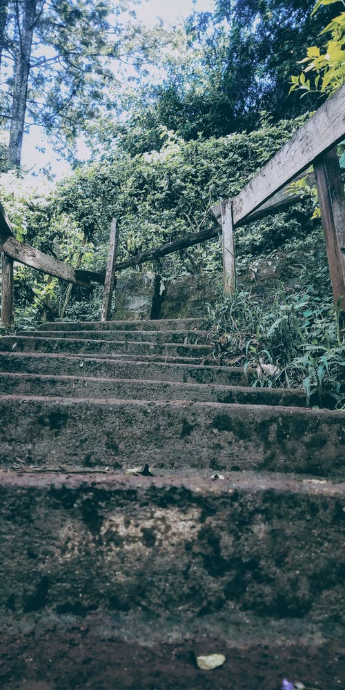 Free stock photo of stairway