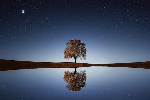 Desktop Background Of Light Dawn Landscape Nature