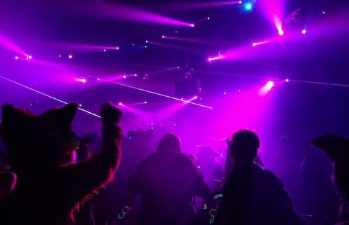 anthro, dans, deli parti, edm içeren Ücretsiz stok fotoğraf