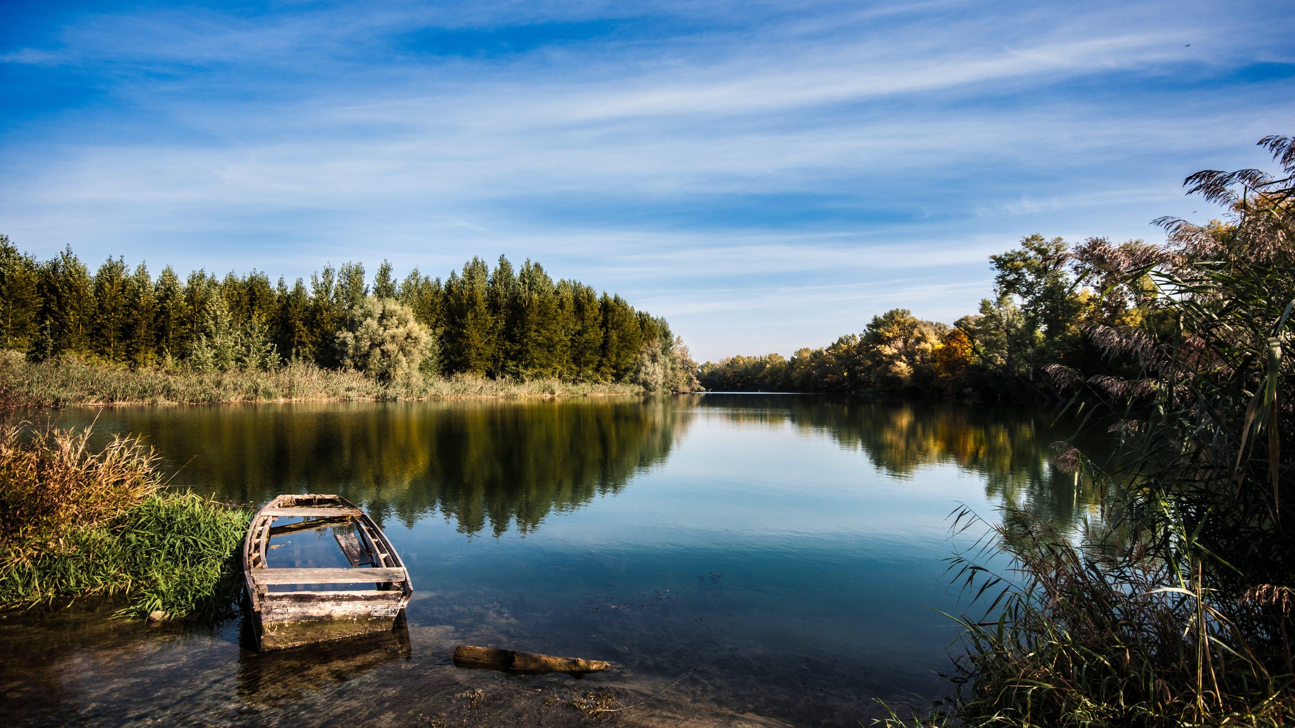 Free stock photo of abandoned, atmosphere, autumn, autumn leaves