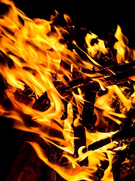 Bonfire Close-up Photography