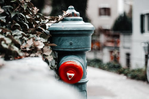 Free stock photo of extinguisher, green color, red, streetart