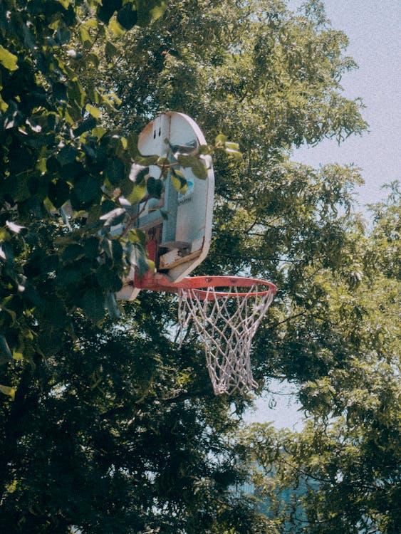 basketball, basketball ring, basketballkurv