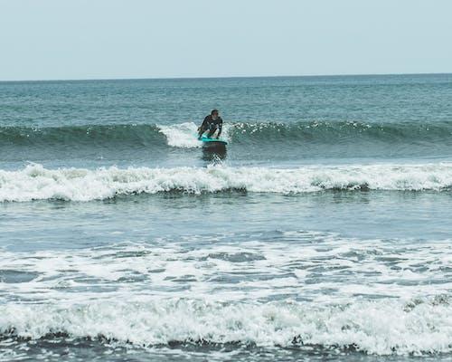 Ảnh lưu trữ miễn phí về biển, bờ biển, các môn thể thao, chuyển động