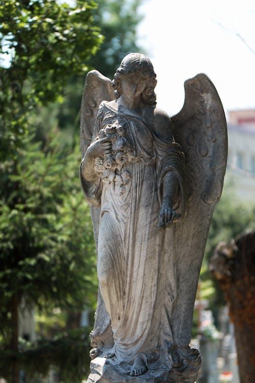 Darmowe zdjęcie z galerii z anioł, artystyczny, cmentarz, drzewa