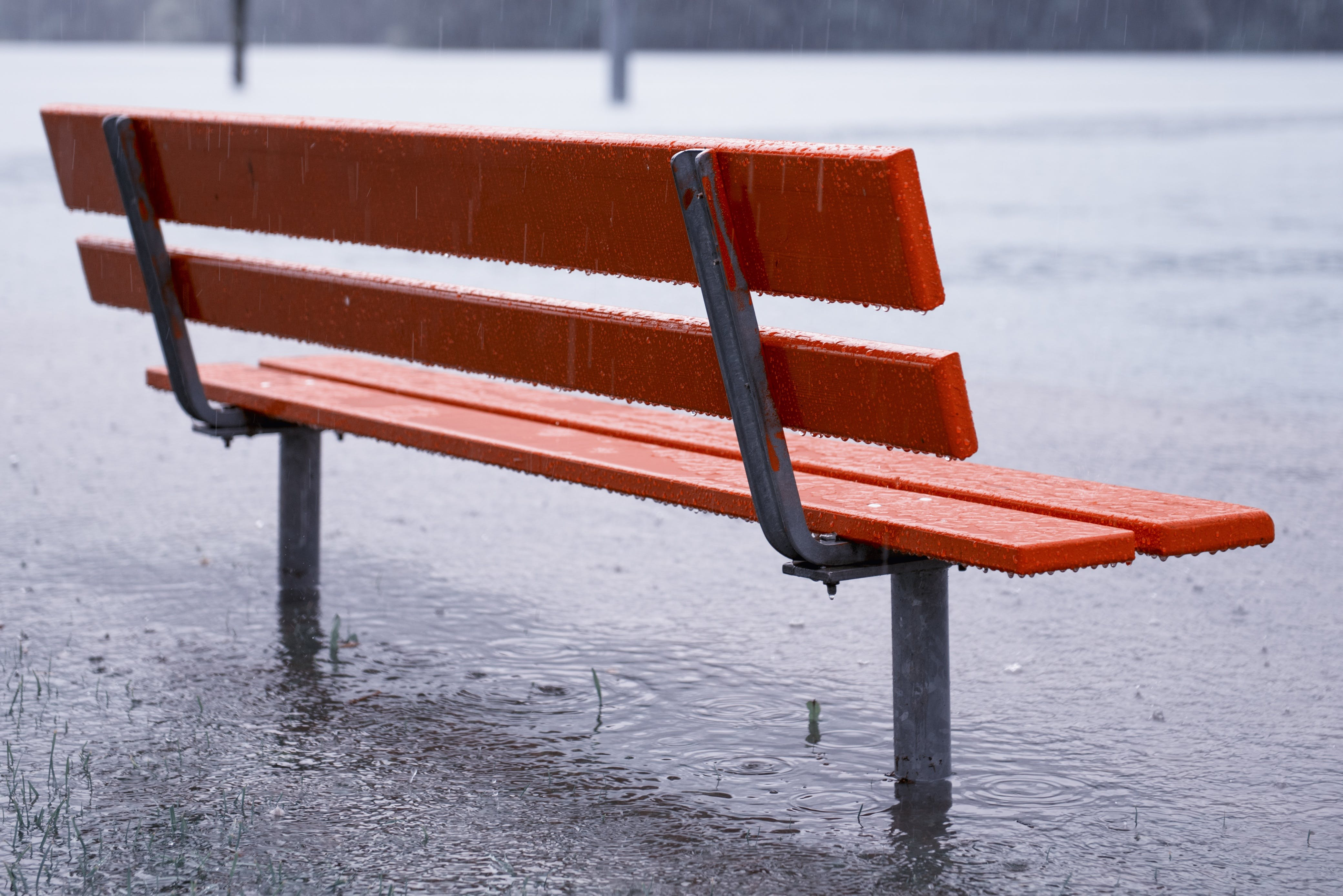 Free stock photo of bench, nature, water, weather