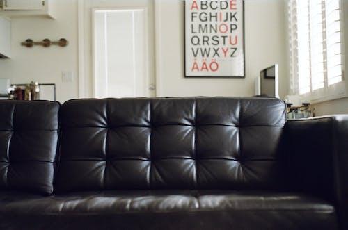 Gratis stockfoto met bank, divan, leer, meubels