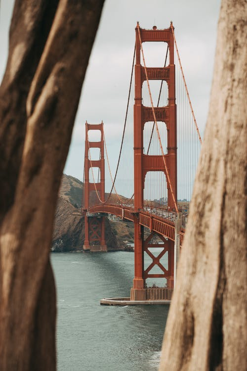 Selective Focus Photography of Brown Metal Bridge
