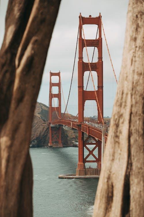 architektúra, mestský, most
