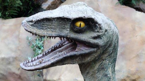 Ảnh lưu trữ miễn phí về khủng long
