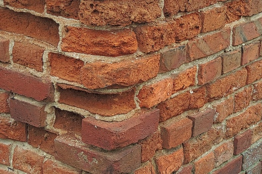 Free stock photo of bricks, wall, old, leave