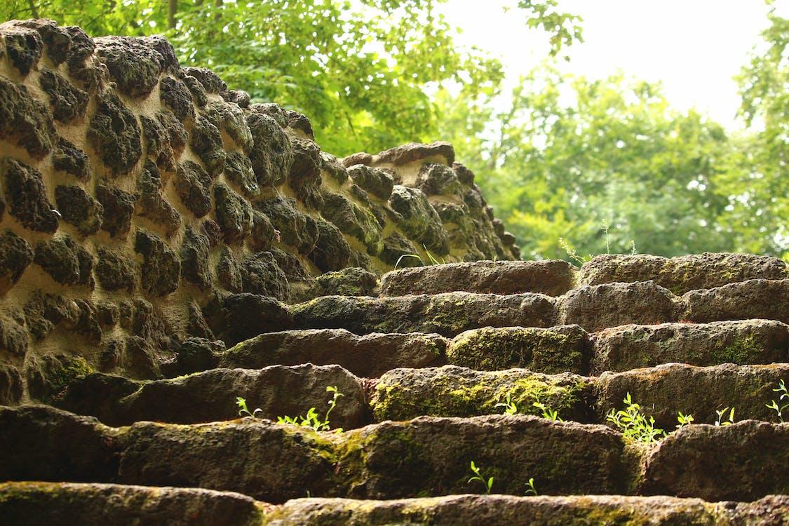 公園, 專注, 岩石