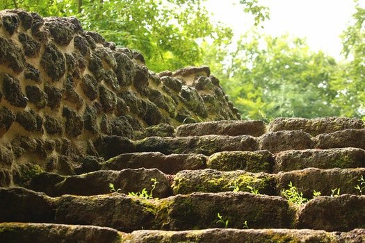 Free stock photo of stairs, landscape, trees, moss