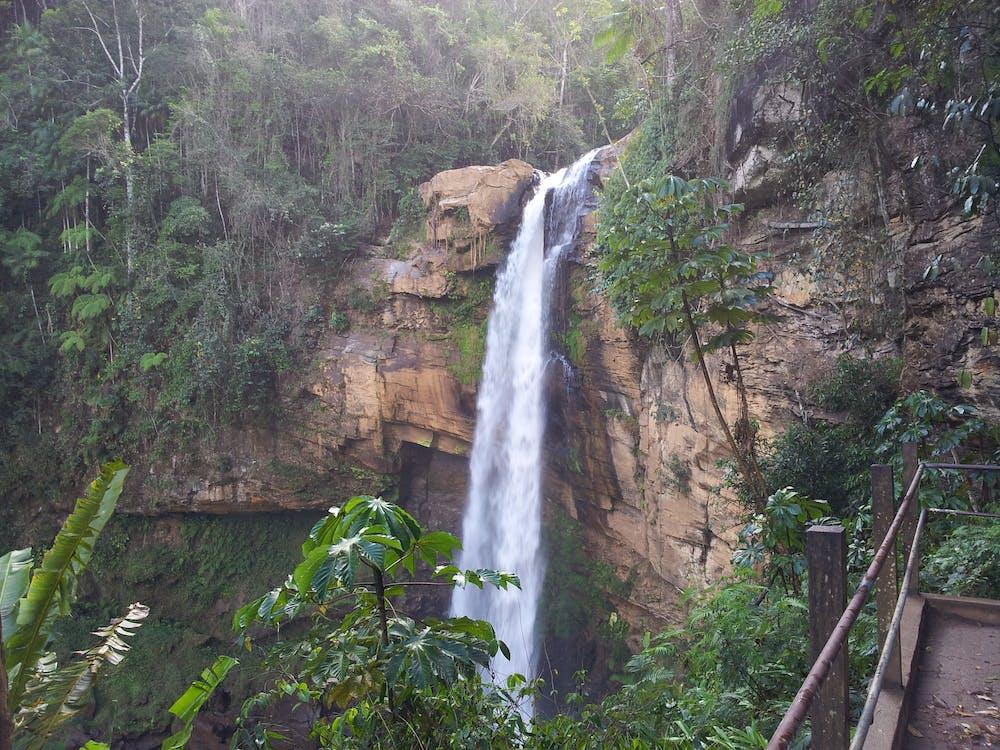 Free stock photo of brasil, cascata, Matilde