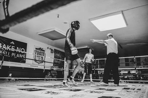 Free stock photo of boxing, combat, sports