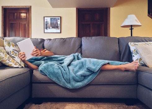 Free stock photo of relax, home, life, couch