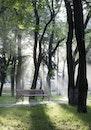 bench, light, landscape