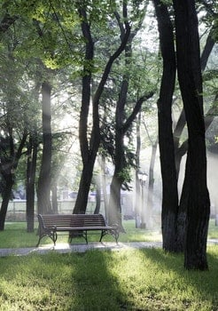 Free stock photo of bench, light, landscape, nature