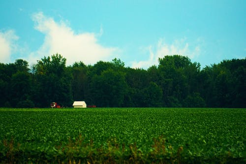 Free stock photo of barn, country, crops, destroir
