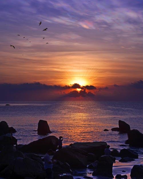 คลังภาพถ่ายฟรี ของ การผ่อนคลาย, การพักผ่อนหย่อนใจ, การสะท้อน, ชายทะเล