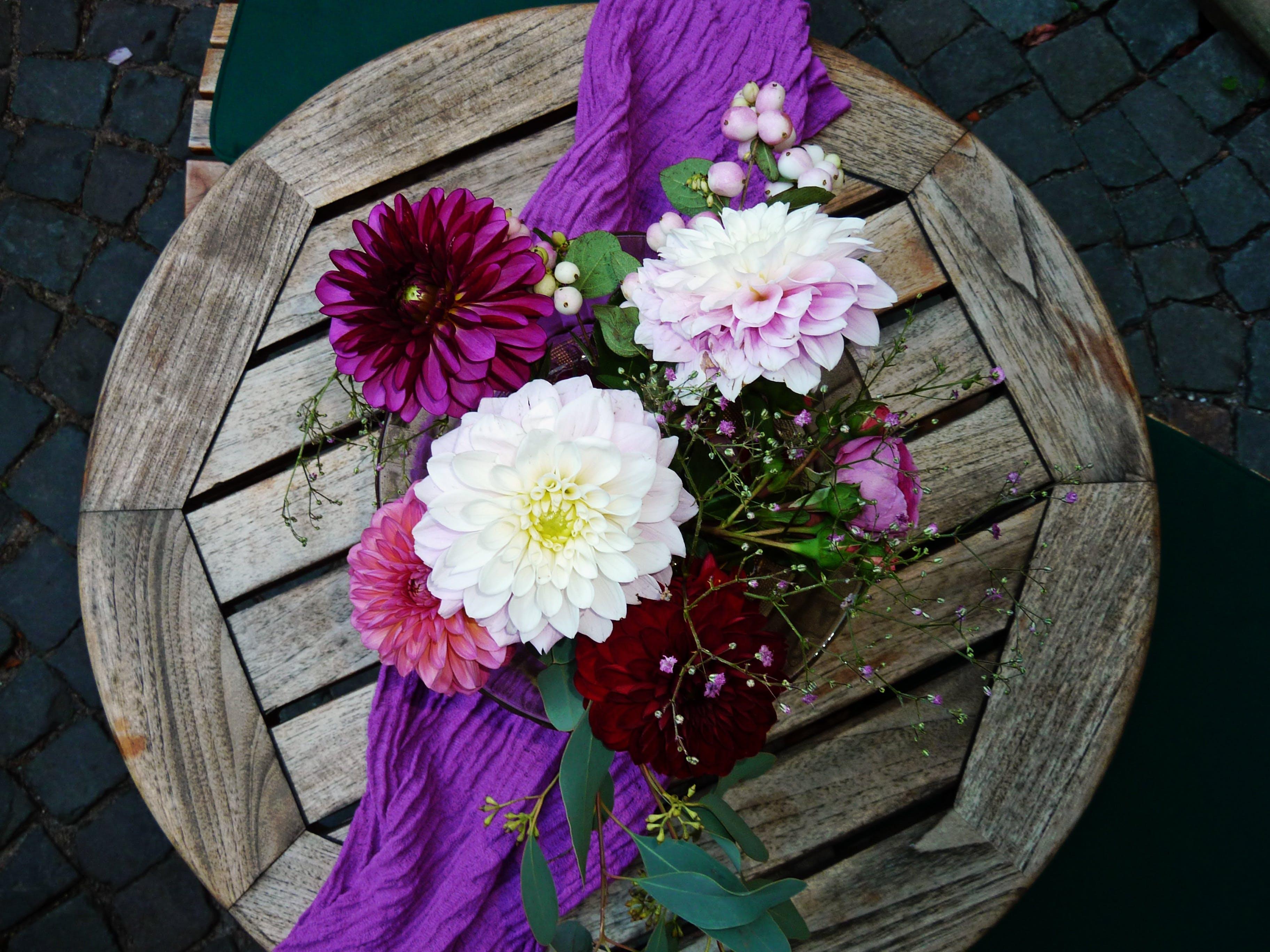 Základová fotografie zdarma na téma barva, dekorativní, dřevěný stůl, fialová