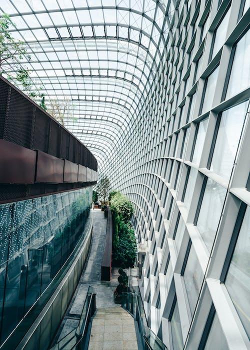 アジア, ガラス窓, シンガポール, ステップの無料の写真素材