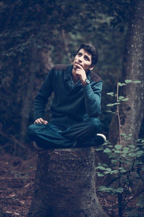 adam, ağaçlar, ahşap, akıllı içeren Ücretsiz stok fotoğraf