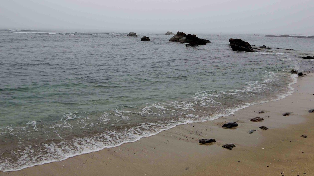 bờ biển, đá, đường bờ biển