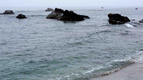 岩石, 海岸, 霧 的 免费素材照片