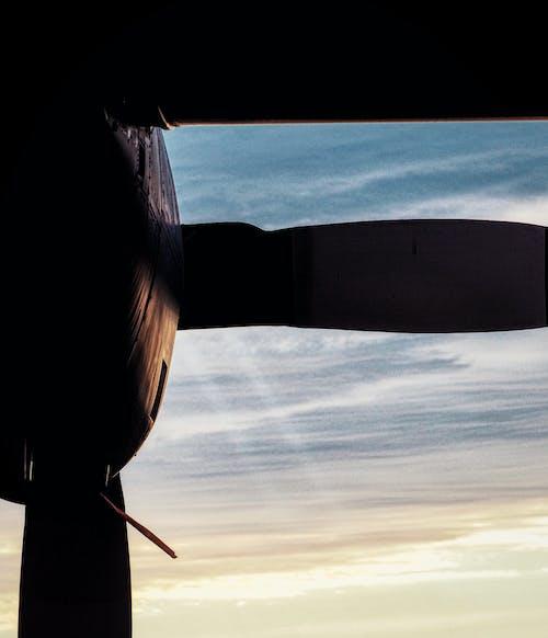 c-130, usaf, ヘラクレス, 早朝の無料の写真素材