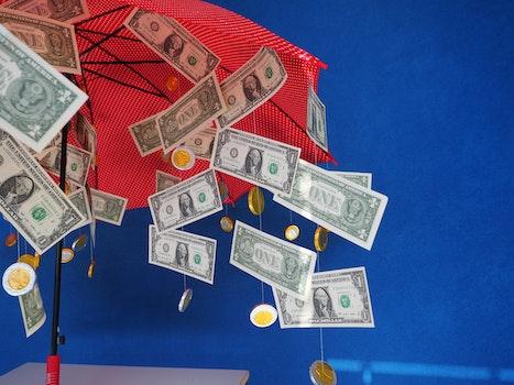 Free stock photo of gift, money, coins, bills