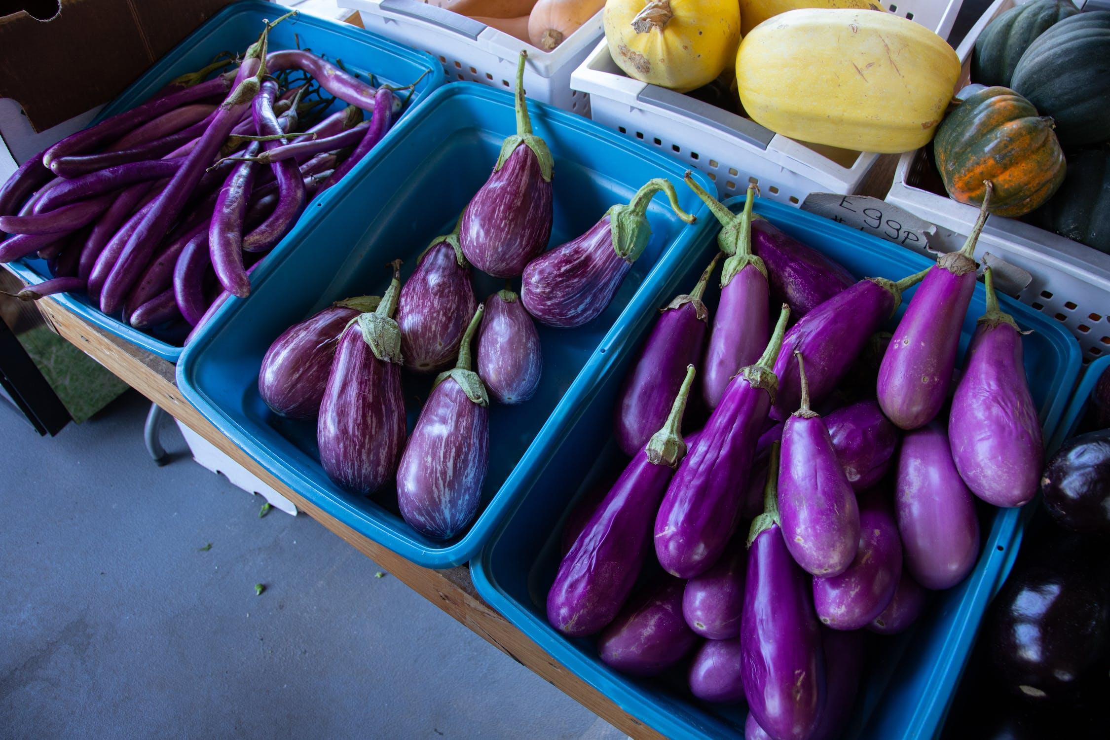 Brinjal / Eggplant Photo by Mark Stebnicki from Pexels