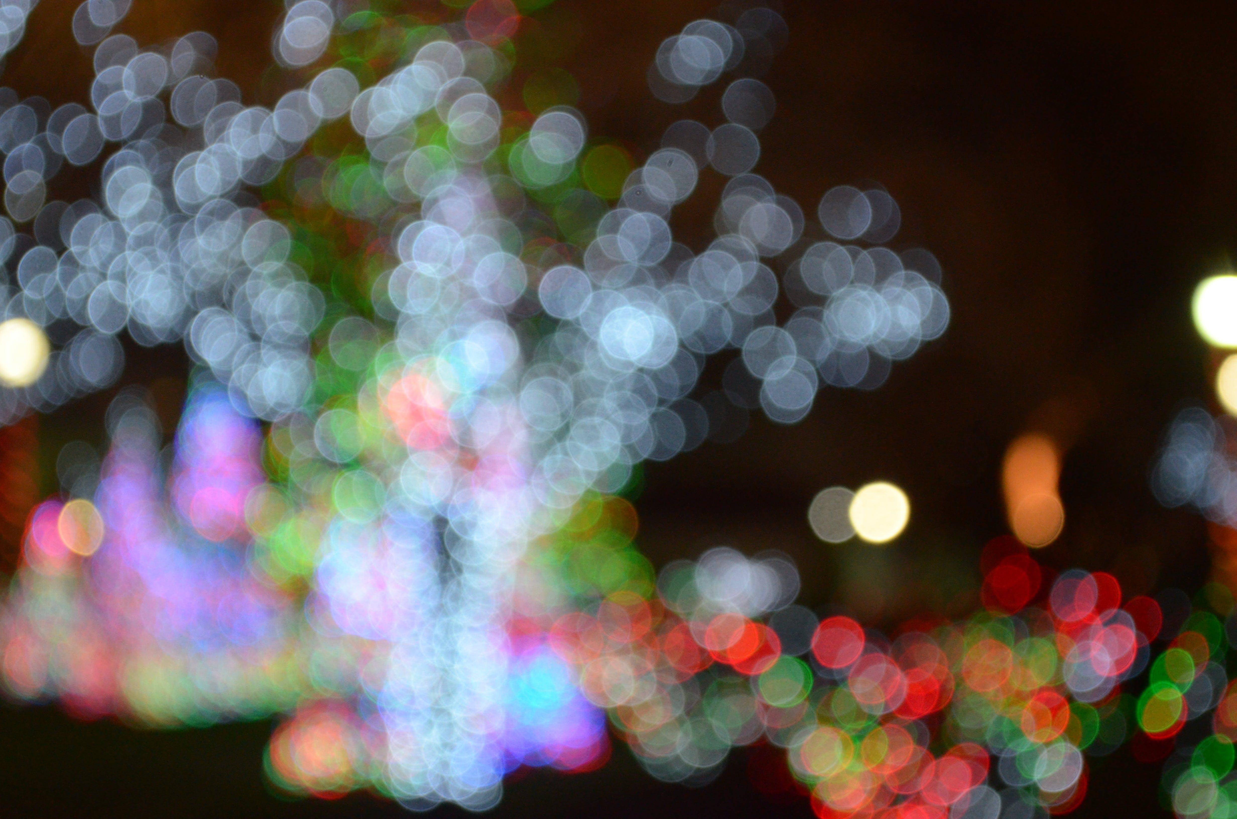 Multicolored Bokeh Light Photography